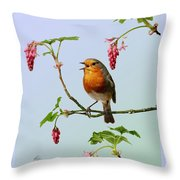 Robin Singing On Flowering Currant Throw Pillow