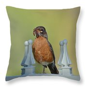 Robin With Worm II Throw Pillow