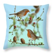 Robins On Larch Throw Pillow