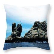 Roca Partida Throw Pillow