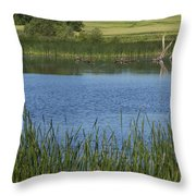 Rochester Wildlife Pond 1 Throw Pillow