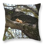 Rock-a-bye Baby... Throw Pillow