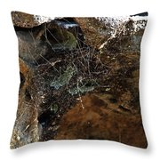 Rock Abstract With A Web Throw Pillow