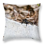 Rock And Robber Fly Throw Pillow
