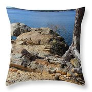 Rock And Root Throw Pillow