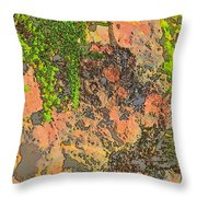 Rock And Shrub Abstract I  Throw Pillow