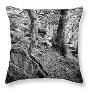 Rock And Trees Throw Pillow