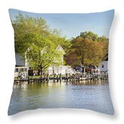 Rock Creek - Pano Throw Pillow