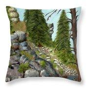 Rock Creek Throw Pillow