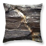 Rock Face Throw Pillow