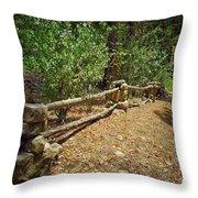 Rock Fence Throw Pillow