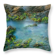Rock Formations In The Sea, Bird Rock Throw Pillow