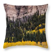 Rock Ledge Throw Pillow
