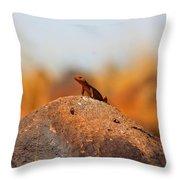 Rock Lizard Throw Pillow