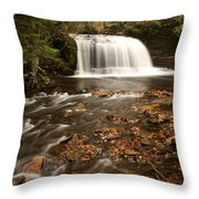 Rock River Falls Throw Pillow