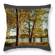Rock River In October Throw Pillow