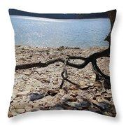 Rock Runners Throw Pillow