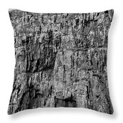 Rock Side Bw #g8 Throw Pillow