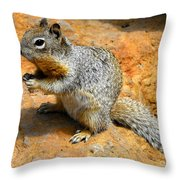 Rock Squirrel Throw Pillow