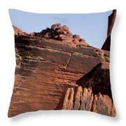 Rock Texture And Lichen Throw Pillow