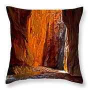 Rock Walls Of Zion Narrows Throw Pillow