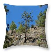 Rockin' Tree Throw Pillow