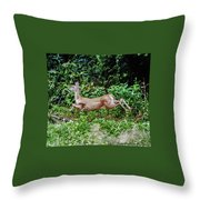 Rocking Deer Throw Pillow