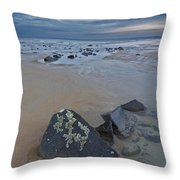Rocks And Barnacles, Plum Island Throw Pillow