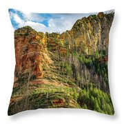 Rocks And Pines Throw Pillow