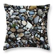 Rocks And Sticks On The Beach Throw Pillow