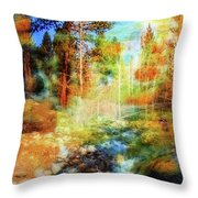 Rocks And Water Double Throw Pillow