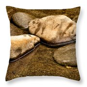 Rocks At Rest Throw Pillow