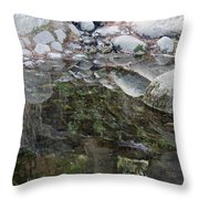 Rocks In Reflection Throw Pillow