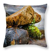 Rocks In The Creek Throw Pillow