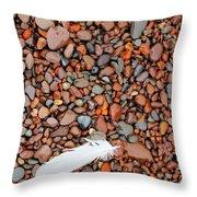 Rocks Of Lake Superior 19 Throw Pillow