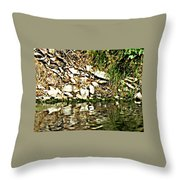 Rocks Reflecting Off Water Throw Pillow