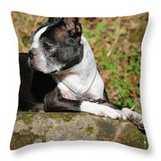 Rocksolid Throw Pillow