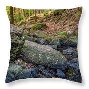 Rocky Brook Throw Pillow