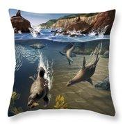 Rocky California Shore Throw Pillow