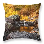 Rocky Creek II On Mill Mountain In The Missouri Ozarks Throw Pillow