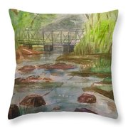 Rocky Creek In The Catskills  Throw Pillow