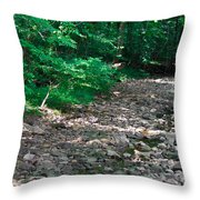 Rocky Creek Throw Pillow