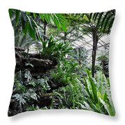 Rocky Fern Room Throw Pillow