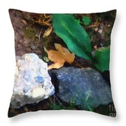 Rocky Ground Throw Pillow