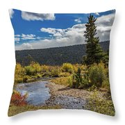 Rocky Mountain Afternoon Throw Pillow