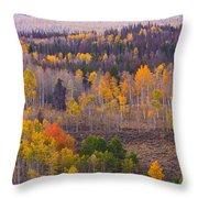 Rocky Mountain Autumn View Throw Pillow
