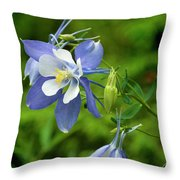 Rocky Mountain Blue Columbine Throw Pillow