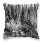 Rocky Mountain High Elevation Forest Large Panorama Throw Pillow