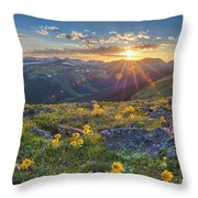 Rocky Mountain National Park Summer Sunflowers Pano 1 Throw Pillow