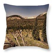 Rocky Mountain National Park Vintage Throw Pillow